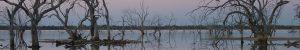 Lake Pinaroo 900 x 150